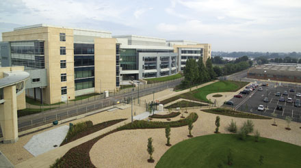 Pfizer Reveals More R&D Cuts | Latest News | Chemical