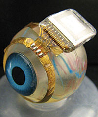 This second-generation retinal implant is sealed with a block copolymer coating.
