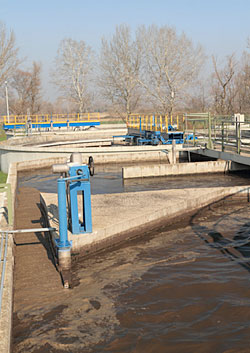 MICROBE SLUDGE Many wastewater treatment plants use bacteria to break down organic material in sewage.