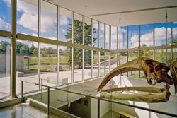 CLEAR COATING Windows at the Museum of the Earth in Ithaca, N.Y., stay clean, thanks to a nanoscale coating of TiO2.