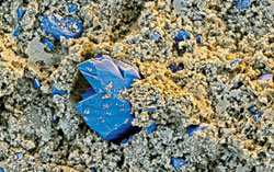 CRYSTALLIZING CONCRETE This colorized scanning electron micrograph shows concrete (brown) crystallizing around X-?Seed crystals (blue), 500 nm to 30 ?m across.