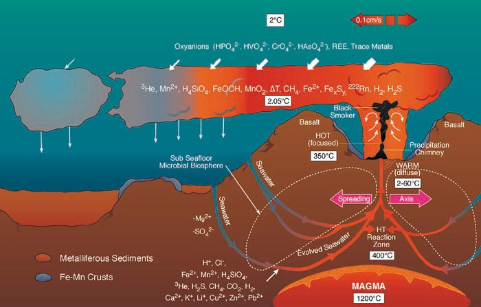 Physical Properties Of Marine Ecosystem