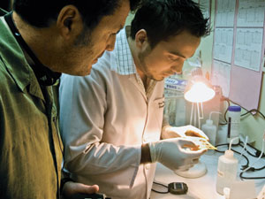 On location Weigl (left) and Marcel Sanchez, a scientist at the Nicaraguan Ministry of Health, examine a leptospirosis assay at a lab there.