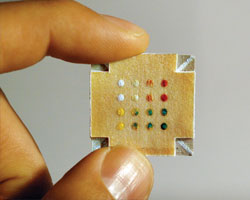 Test pattern Inexpensive, three-dimensional microfluidic devices made from paper can be used for metabolic tests such as detecting glucose (top two rows) and protein (bottom two rows) in urine.